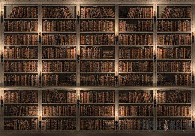 Fototapeta Biblioteka pełna książek 3688