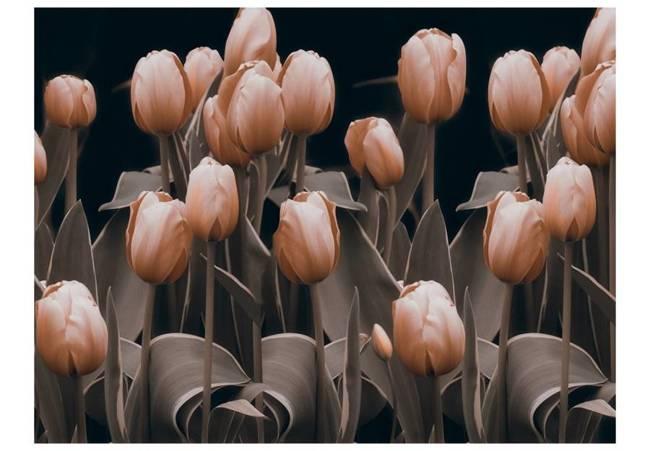 Fototapeta - Ladies among the flowers