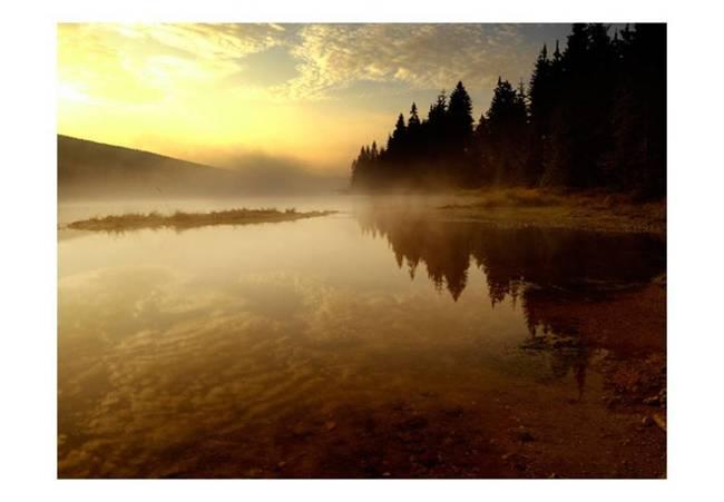 Fototapeta - Las i jezioro