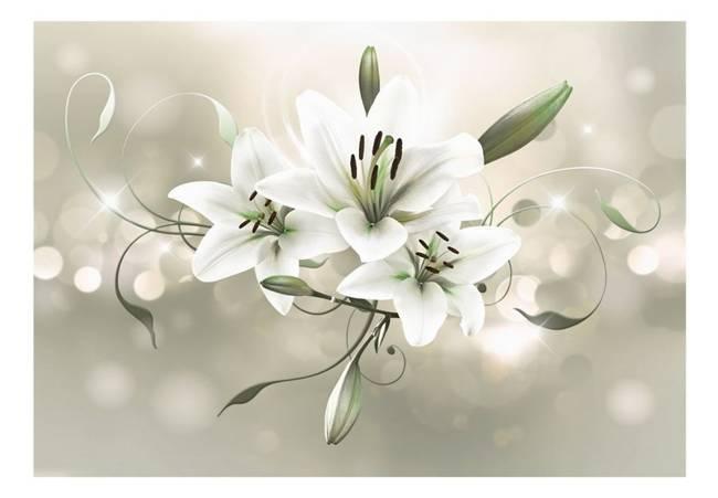Fototapeta - Lilia - Kwiat władców