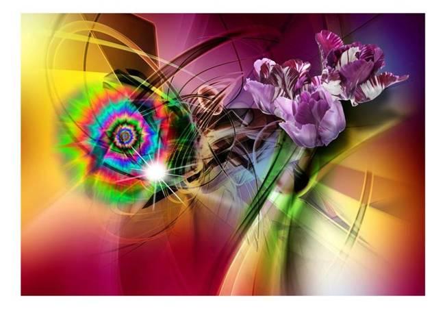 Fototapeta - Magiczne światło kolorów