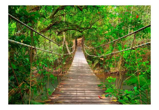 Fototapeta - Most pośród zieleni
