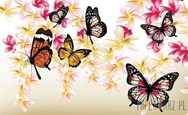 Fototapeta Motyle na gałązkach 558