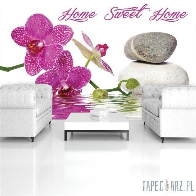 Fototapeta Orchidea spa 786