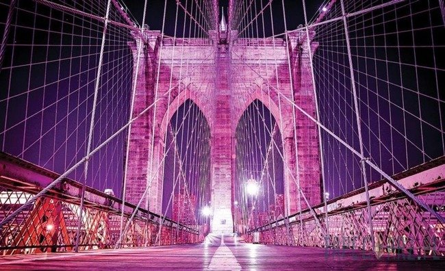 Fototapeta Różowy Brooklyn Bridge 798