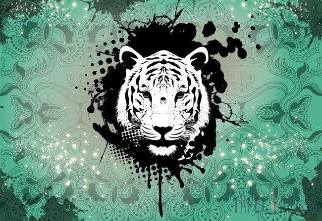 Fototapeta Tygrys na zielonym tle 2188