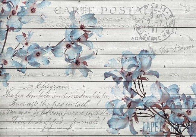 Fototapeta Vintage - niebieskie kwiaty 3545
