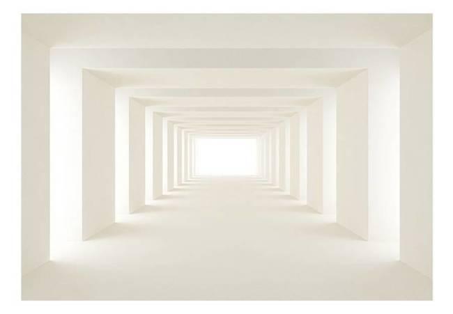 Fototapeta - W stronę światła