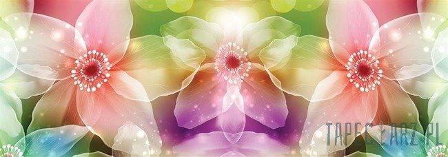 Fototapeta na flizelinie Kolorowe kwiaty 1544VEE