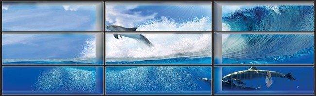 Fototapeta na flizelinie Widok na delfiny przez okno 441VEE