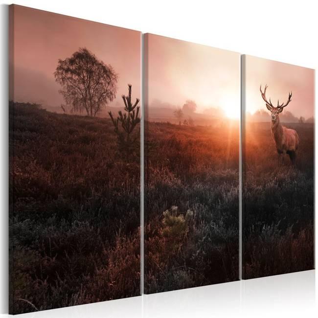 Obraz - Jeleń w blasku słońca I