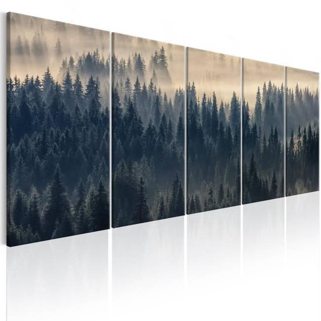 Obraz - Jodły we mgle
