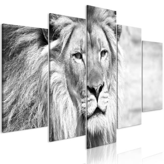 Obraz - Król zwierząt (5-częściowy) szeroki czarno-biały