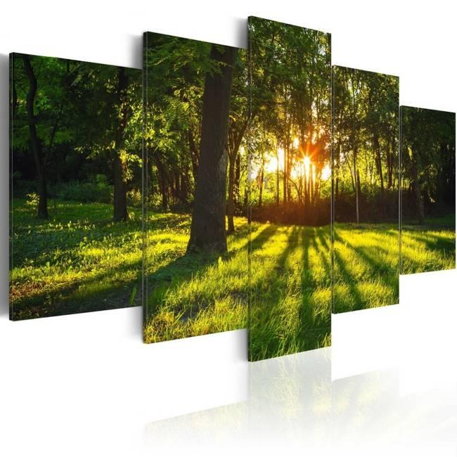 Obraz - Leśna refleksja