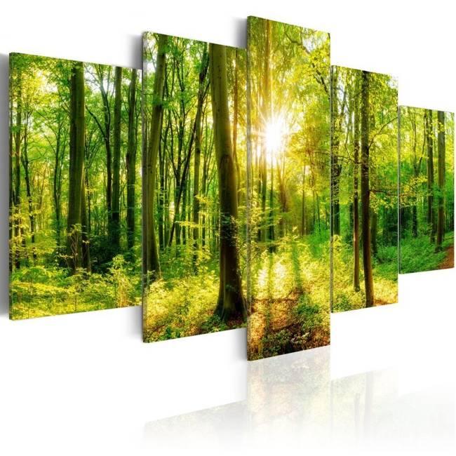 Obraz - Opowieść lasu