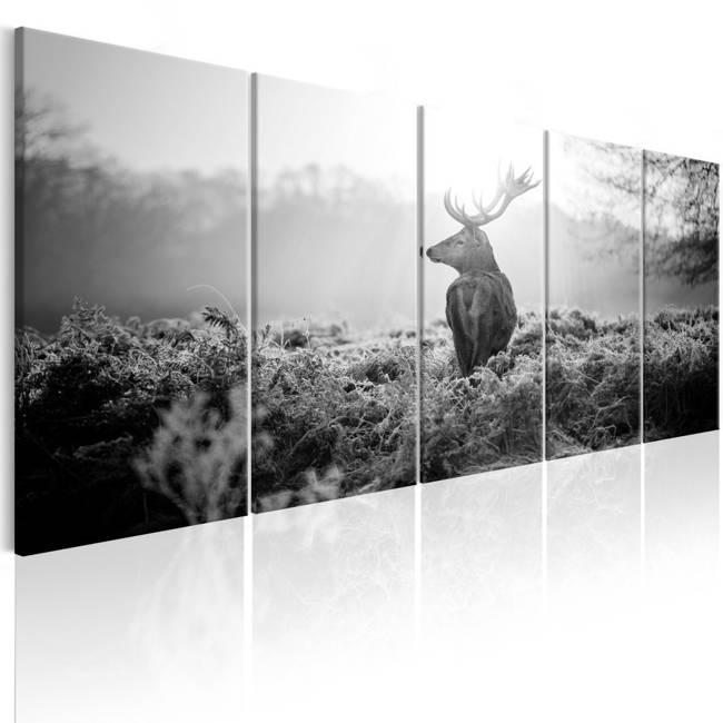 Obraz - Strażnik pola