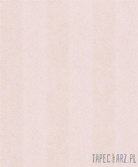 Tapeta ścienna RASCH 482843 Pop Skin