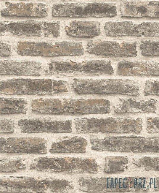 Tapeta ścienna Ugepa J17918 Roll in Stones