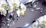 Fototapeta Białe orchidee 2159