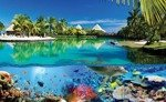 Fototapeta Rafa koralowa i Malediwy 3356